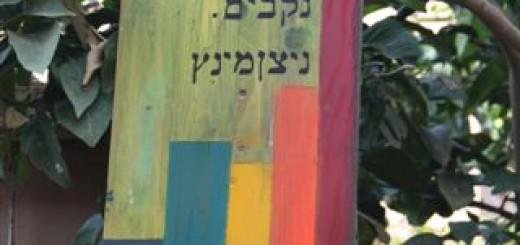 graffitynizanminzshelet