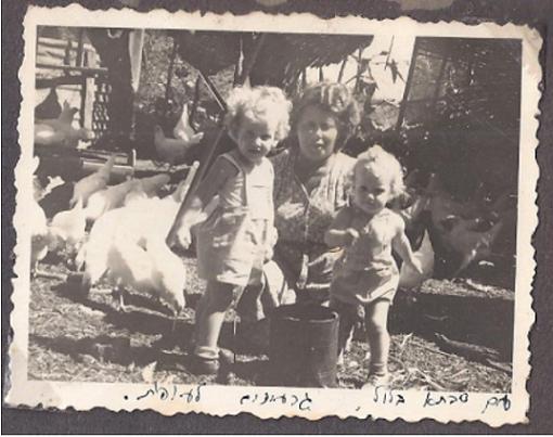 הלול של סבתא - עותק