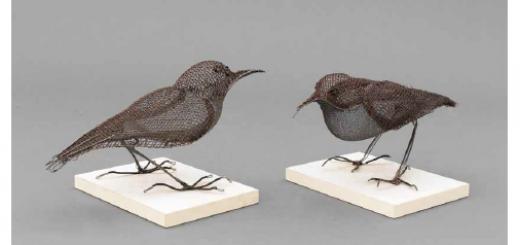 ציפורים - עותק