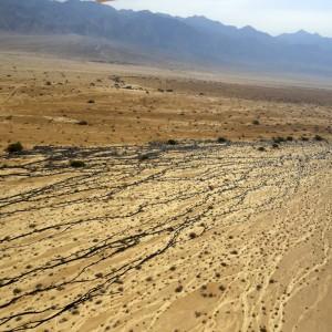 אסון-נפט-גולמי-בערבת-עברונהרועי-טלבי700-3-לדצמבר-2014-012