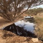 זיהום-נפט-באר-אורה-4