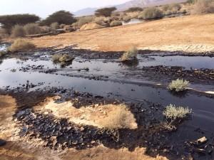 זיהום-נפט-באר-אורה-700